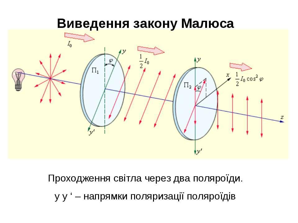 Виведення закону Малюса Проходження світла через два поляроїди. y y ' – напря...