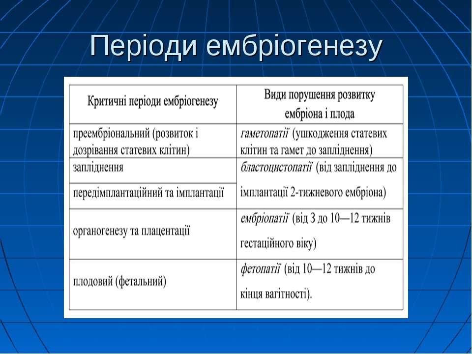 Періоди ембріогенезу