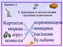 Картопля морква аґрус конвалія 8. Відповідність між рослинами і органами розм...