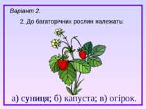 а) суниця; б) капуста; в) огірок. 2. До багаторічних рослин належать: а) суни...