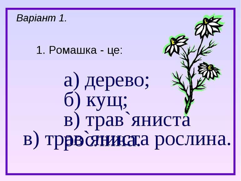а) дерево; б) кущ; в) трав`яниста рослина. 1. Ромашка - це: Варіант 1. в) тра...