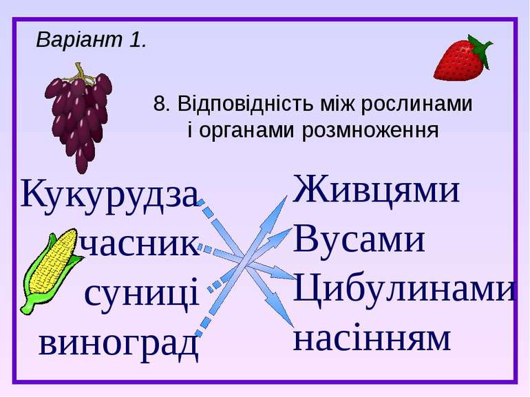 Кукурудза часник суниці виноград 8. Відповідність між рослинами і органами ро...