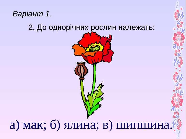 а) мак; б) ялина; в) шипшина. 2. До однорічних рослин належать: а) мак; Варіа...