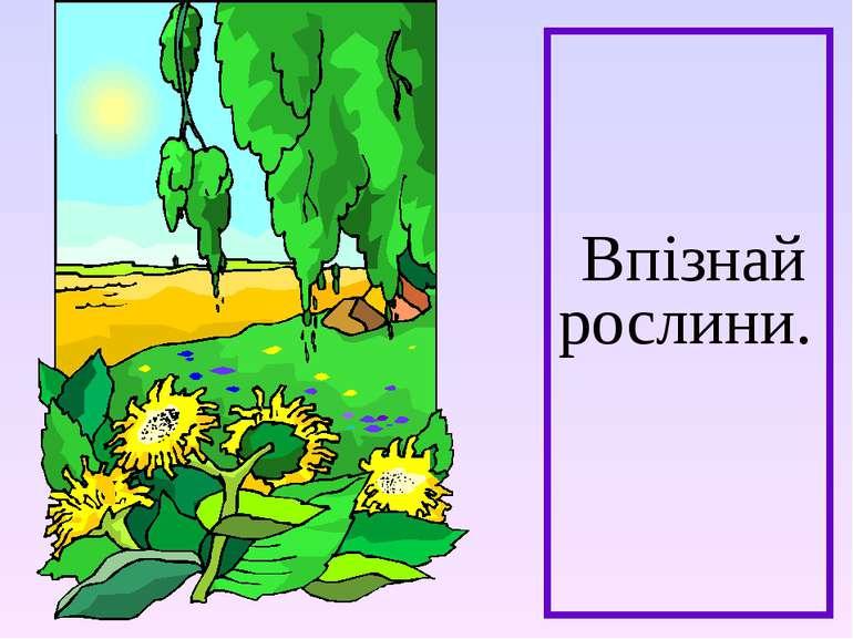 Впізнай рослини.