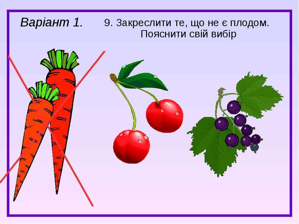 9. Закреслити те, що не є плодом. Пояснити свій вибір Варіант 1.