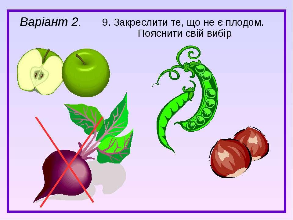 9. Закреслити те, що не є плодом. Пояснити свій вибір Варіант 2.