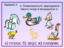 а) птахи; б) звірі; в) плазуни. 3. Розмножуються, відкладаючи яйця в гнізда й...