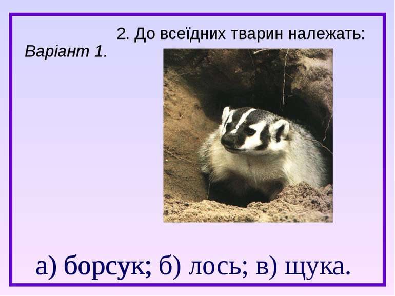 а) борсук; б) лось; в) щука. 2. До всеїдних тварин належать: а) борсук; Варіа...