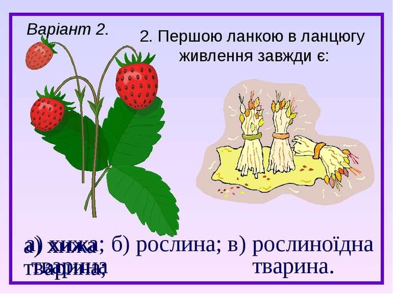 а) хижа; б) рослина; в) рослиноїдна тварина тварина. 2. Першою ланкою в ланцю...