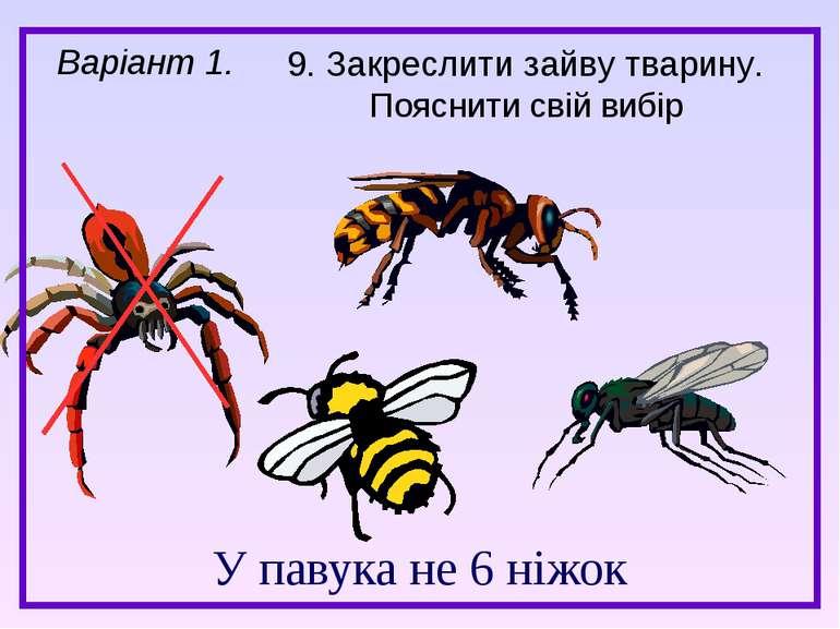 У павука не 6 ніжок Варіант 1. 9. Закреслити зайву тварину. Пояснити свій вибір