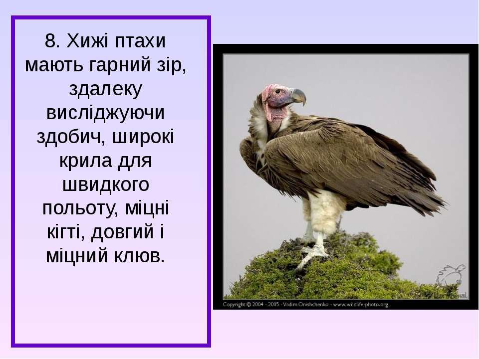 8. Хижі птахи мають гарний зір, здалеку висліджуючи здобич, широкі крила для ...