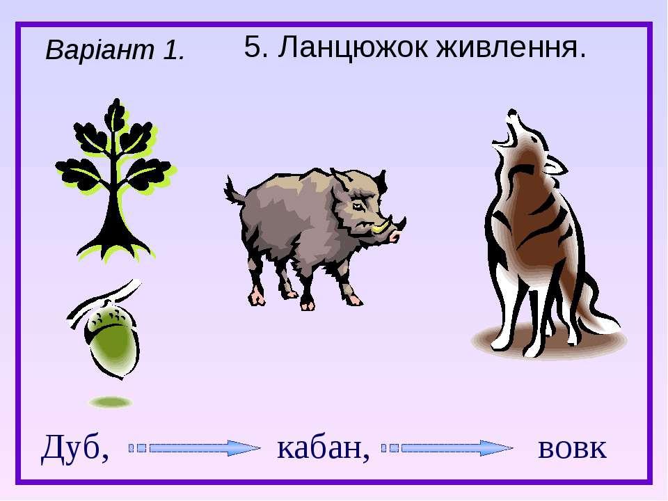 5. Ланцюжок живлення. Варіант 1. Дуб, кабан, вовк