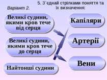 5. З`єднай стрілками поняття та їх визначення: Варіант 2. Капіляри Артерії На...