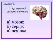 а) мозок; б) серце; в) печінка. 1. До нервової системи належать Варіант 2. а)...