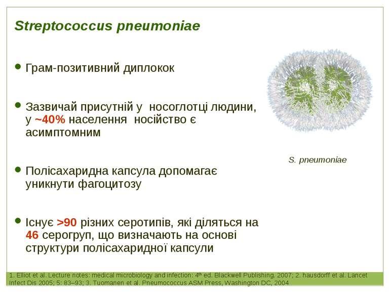 Грам-позитивний диплокок Зазвичай присутній у носоглотці людини, у ~40% насел...