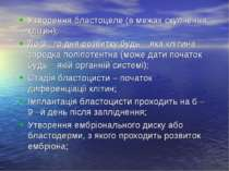 Утворення бластоцеле (в межах скупчення клітин); До 3 –го дня розвитку будь –...