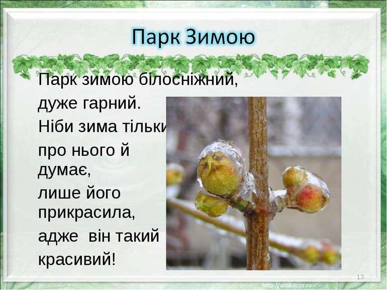 Парк зимою білосніжний, дуже гарний. Ніби зима тільки про нього й думає, лише...