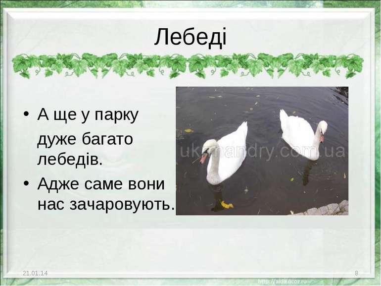 А ще у парку дуже багато лебедів. Адже саме вони нас зачаровують. * * Лебеді