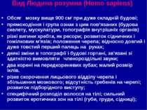 Вид Людина розумна (Homo sapiens) Обсяг мозку вище 900 см3 при дуже складній ...