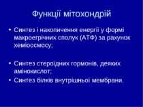 Функції мітохондрій Синтез і накопичення енергії у формі макроегрічних сполук...