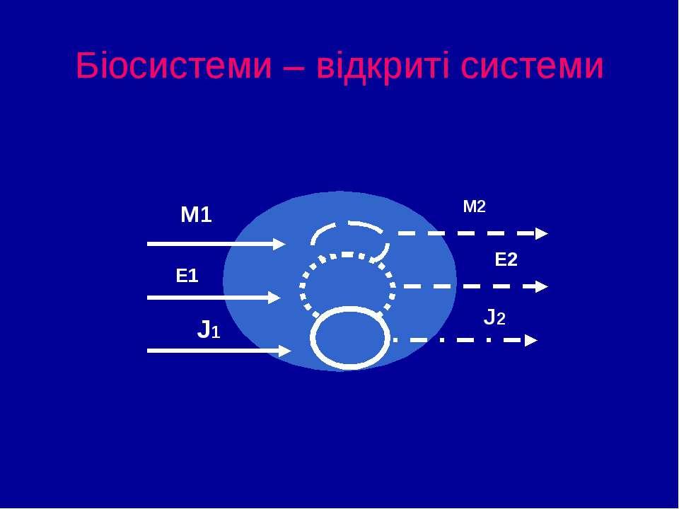 Біосистеми – відкриті системи М1 Е1 J1 М2 Е2 J2