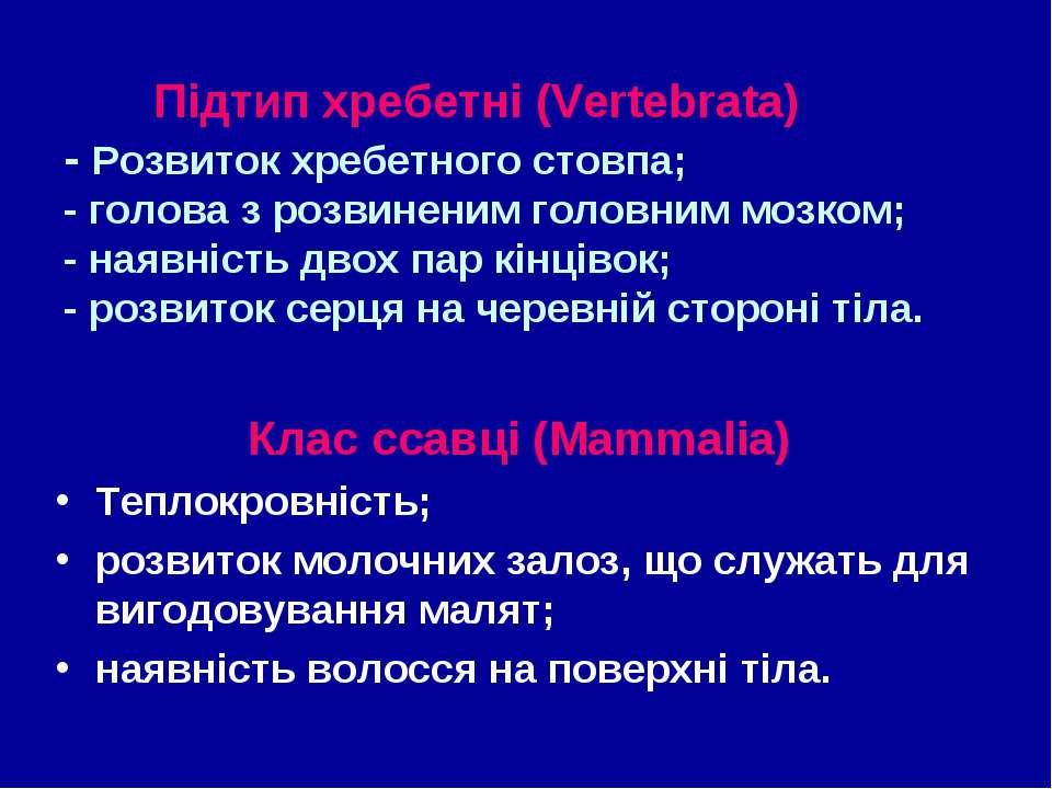 Підтип хребетні (Vertebrata) - Розвиток хребетного стовпа; - голова з розвине...
