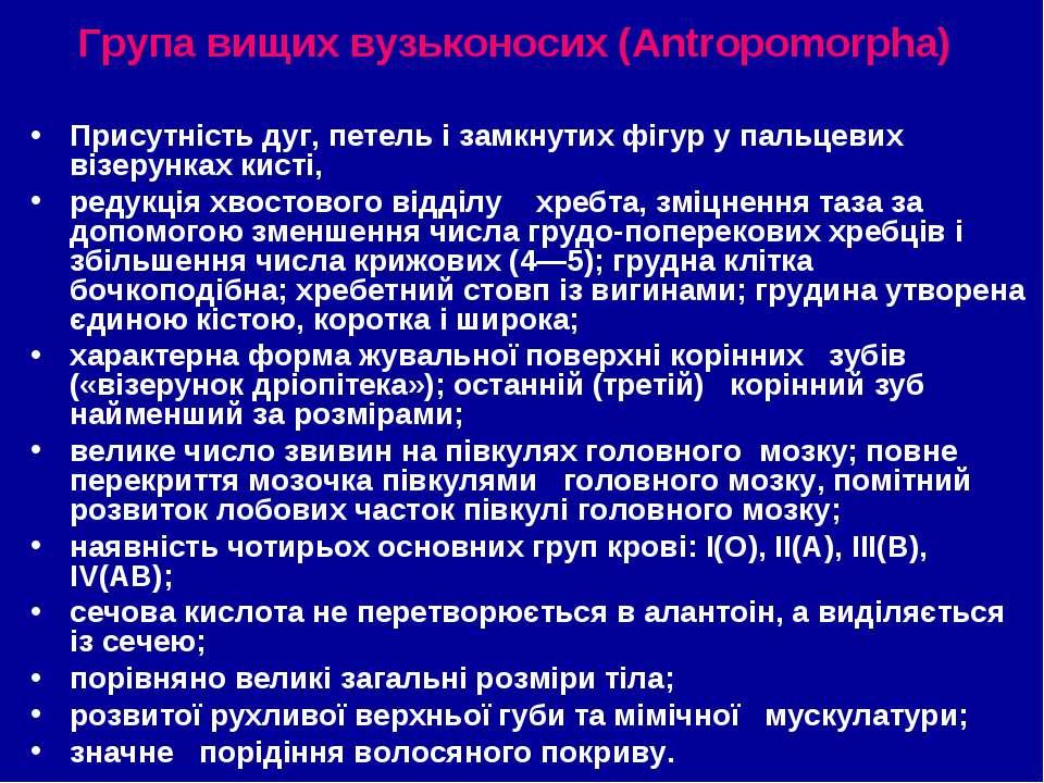 Група вищих вузьконосих (Antropomorpha) Присутність дуг, петель і замкнутих ф...