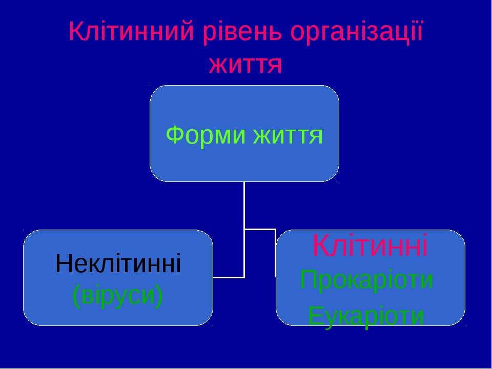Клітинний рівень організації життя