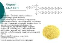 Лецитин Е322, Е476 Лецитины — сложные эфиры холина и диглицеридфосфорных кисл...
