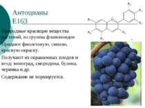 Антоцианы Е163 Природные красящие вещества растений, из группы флавоноидов Пр...